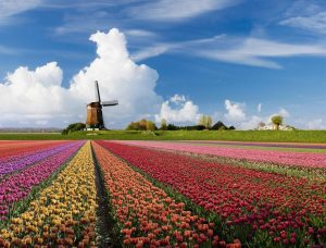 Flight Tickets Netherlands
